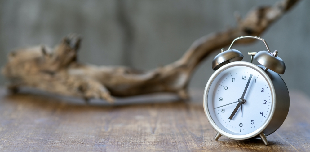 乾燥時間 時計